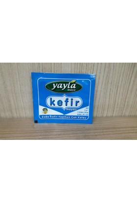 Yayla Toz Kefir Mayası 1-3 Litre Süt İçin
