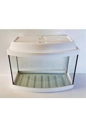 Kanki Pet Akvaryum 80 Cm Bombeli Beyaz Tam Kapaklı 80x32x52 Cm