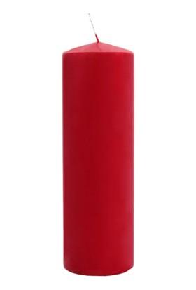 Euro Flora Mum 25X8 Cm (Rubın Red-26)