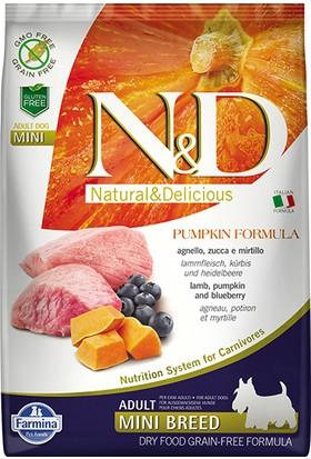 N&D Pumpkin Tahılsız Bal Kabaklı, Kuzu Etli Ve Yaban Mersinli Küçük Irk Yetişkin Köpek Maması 7 Kg