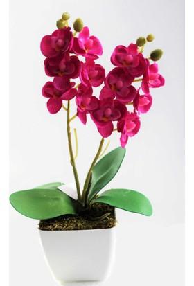 Yapay Çiçek Deposu Yapay Çiçek Plastik Saksıda Orkide