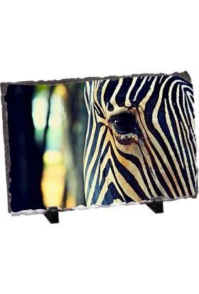 Fotografyabaski Zebra Gözü Dikdörtgen Taş Baskı 15X20 Cm