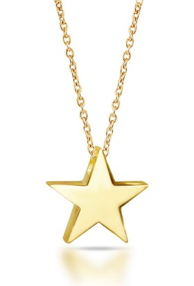 Goldstore 14 Ayar Altın Yıldız Kolye Gp40041
