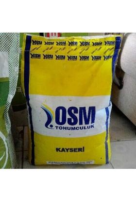 Osm Osm Kayseri Yonca Tohumu 10 Kg 10 Adet (100 Kg)