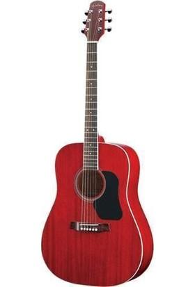 Walden D351Srw Standart Seri Akustik Gitar