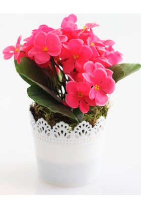 Yapay Çiçek Deposu Dantelli Plastik Saksıda Menekşe Çiçeği Fuşya