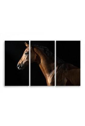 ArtRedGallery (3 Parçalı) Hayvan Kanvas Tablo 115 x 75