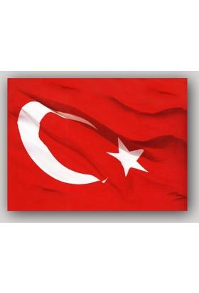 ArtRedGallery Türk Bayrağı Tablo