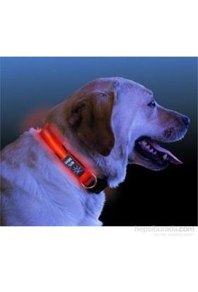 Cix Işıklı Köpek Boyun Tasması
