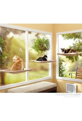 Cix Pet Zoom Kedi Pencere Yatağı