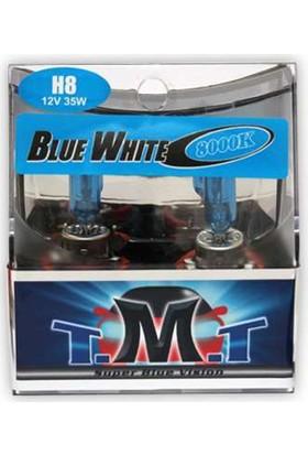 T.M.T Set Ampul H8 12V 5000K Beyaz Işık