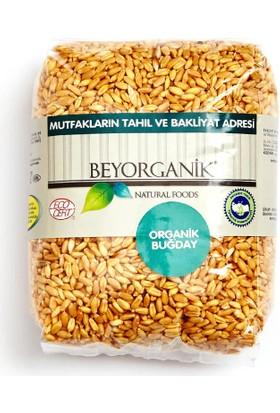 Beyorganik Organik Buğday 500 Gr.