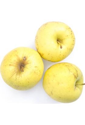 Cıty Farm Organik Elma - Sarı Kg.