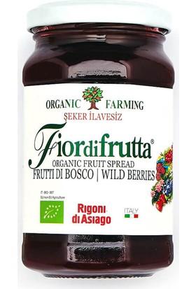 Fior Di Frutta Organik Kırmızı Orman Meyveli Püre 250 Gr.