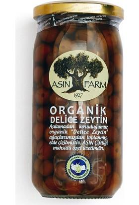 Asın Farm Organik Yabani Yeşil Zeytin 340 Gr.