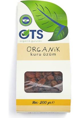 Ots Organik Üzüm Kurusu 200 Gr.