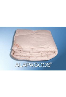 Alapagoos Gold Yorgan(Çift Kişilk)