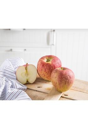 Çanakkaleden Kırmızı Elma 1 Kg
