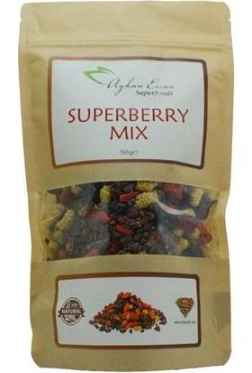 Ayhan Ercan Süper Gıda Superberry Mix 150 G