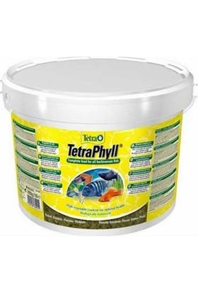 Tetra Phyll Bitkisel Pul Yem 100 Gram