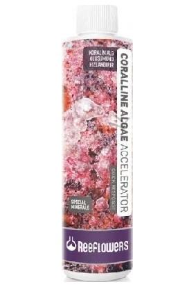 Reeflowers Coralline Algae Accelerator - Quick Response 250 Ml