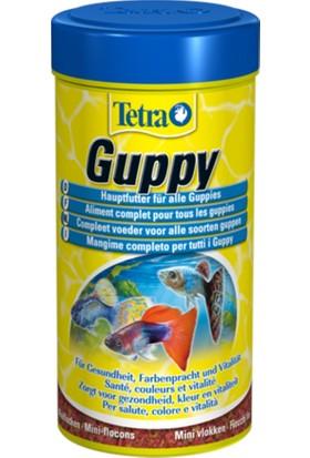 Tetra Guppy 100 Ml Lepistes Balığı Yemi