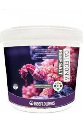 Reeflowers Caledonia Reef Salt Tuz 22.5Kg