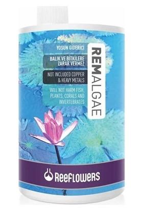 Reeflowers Remalgae Yosun Giderici 1000Ml