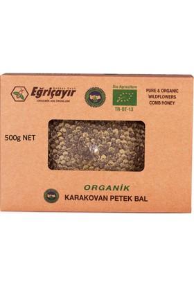 Eğriçayır İpeknaturel Karakovan Petek Bal 500G