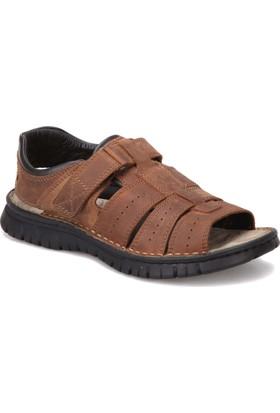 Zen 476858 Kahverengi Erkek Deri Modern Ayakkabı