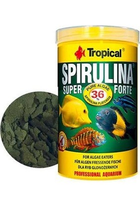 Tropical Super Spirulina Forte%36 Flake 1000ml 200gr