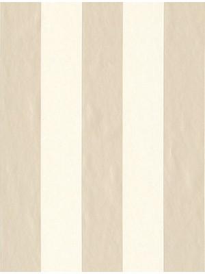Çizgi Desen Duvar Kağıdı 4858