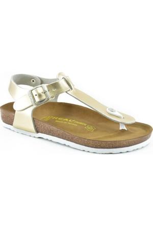 Real Natura 129-Parion Altın Rengi Kadın Sandalet