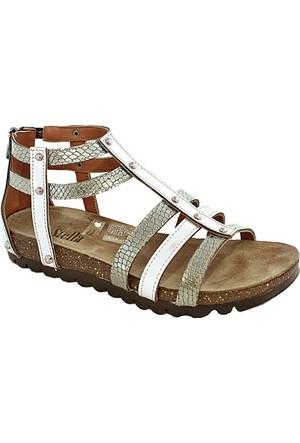 Stella 7017 Kadın Bantlı Sandalet Altın