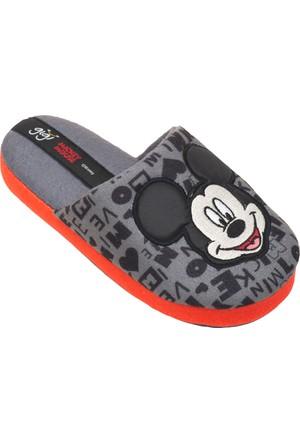 Mickey Mouse 72000 Fe Gri Erkek Çocuk Terlik