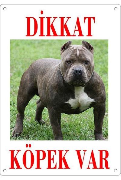 Dikkat Köpek Var Uyari Levhasi (Renkli Pitbull)