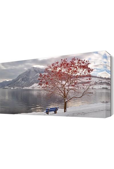 Dekor Sevgisi Kar ve Dağ Manzarası Canvas Tablo 45x30 cm