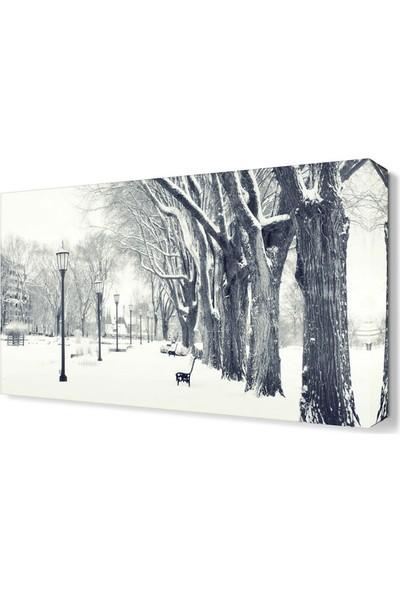 Dekor Sevgisi Kar ve Ağaçlar Tablosu 45x30 cm