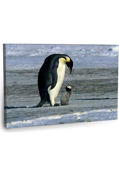 Fotografyabaskı Penguen Tablosu 75 Cm X 50 Cm Kanvas Tablo Baskı