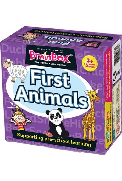 GreenBoard BrainBox İlk Hayvanlarım (First Animals)