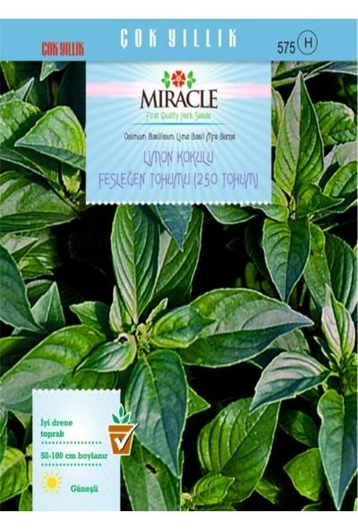 Miracle Limon Kokulu Fesleğen Tohumu (250 tohum)