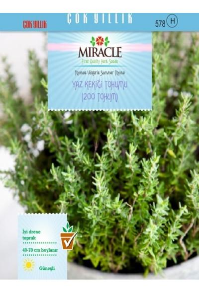 Miracle Yaz Kekiği Tohumu (200 tohum)