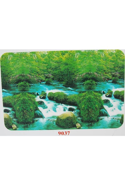 Xiongfa Poster 50 Cm-15 M