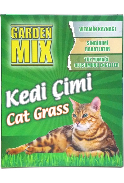 Garden Mix Kedi Çimi Büyük