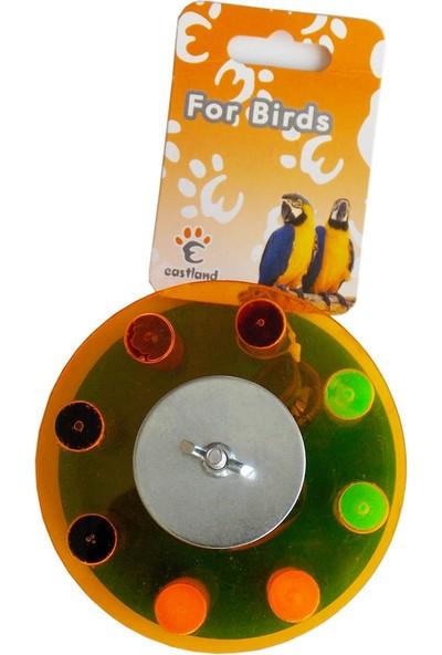 Eastland Plastik Kuş Oyuncağı