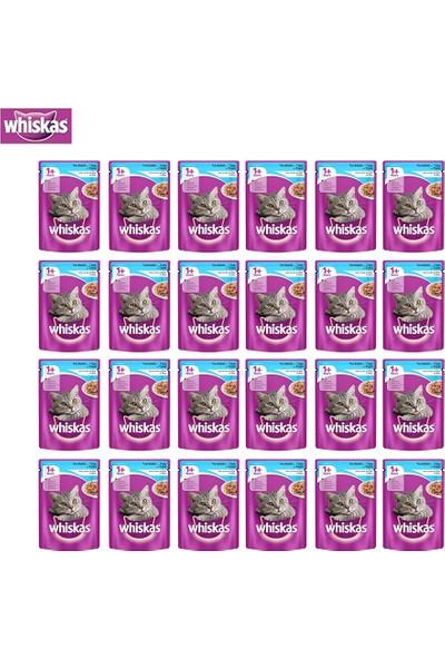 Whiskas Pouch Ton Balıklı Kedi Maması 100G 24'Lü