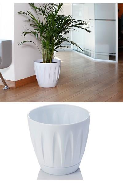 Mini Garden Papatya Saksı 3 LT Beyaz