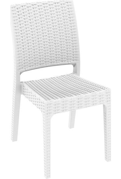 Siesta Rattan Florida Sandalye - Beyaz