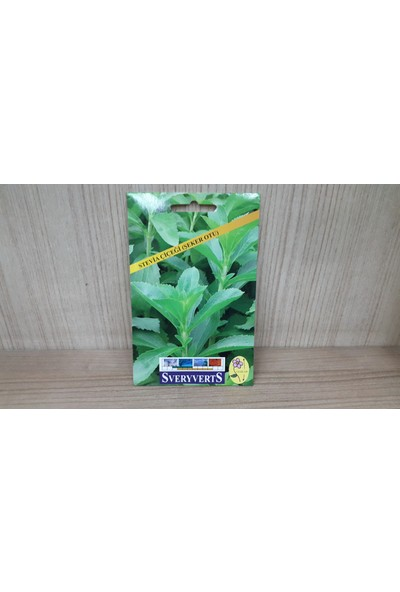 Sveryverts Stevia Çiçeği Tohumu Paket