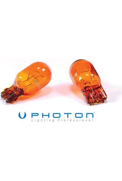 Photon Amerikan Turuncu T20 Şişman Japon Dipsiz Park Ampülü 85D051